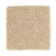 Stylish Story I in Milk Shake - Carpet by Mohawk Flooring