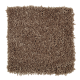 Graceful Beauty in Sumatra Blend - Carpet by Mohawk Flooring