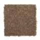 Santorini Style II in Saddle - Carpet by Mohawk Flooring