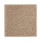 Luxurious Class in Timeless - Carpet by Mohawk Flooring