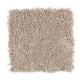 Global Allure II in Boardwalk - Carpet by Mohawk Flooring