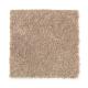 Santorini Style II in Velvet Brown - Carpet by Mohawk Flooring