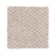 Hidden Treasure in Dove Feather - Carpet by Mohawk Flooring