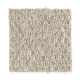 Smartly Chosen in Valley Oak - Carpet by Mohawk Flooring