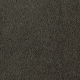 Famous Fair in Ivy League - Carpet by Mohawk Flooring