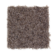 Flawless Design in German Chocolate - Carpet by Mohawk Flooring