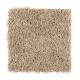 Living Legacy in Sagebrush - Carpet by Mohawk Flooring