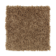 Simple Selection in Spice Tone - Carpet by Mohawk Flooring
