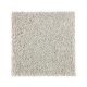Nature's Appeal I in Ocean Spray - Carpet by Mohawk Flooring