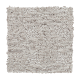 Infinite Potential in Longhorn - Carpet by Mohawk Flooring