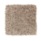 Colorful Moment in Tender Brown - Carpet by Mohawk Flooring