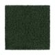 Burnout in Pinehurst - Carpet by Mohawk Flooring