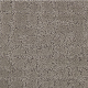 Luxurious Debut in Clam Shell - Carpet by Mohawk Flooring