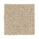 Taste Of Luxury in Shadowsilk - Carpet by Mohawk Flooring