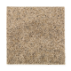Sunsations in Granola - Carpet by Mohawk Flooring