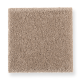 Pleasant Nature in Canyon Glow - Carpet by Mohawk Flooring