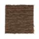 Composed in Warmth - Carpet by Mohawk Flooring