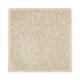 Opulent Charm in Grande Oak - Carpet by Mohawk Flooring