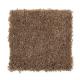 Prestige Style in Acorn Trail - Carpet by Mohawk Flooring