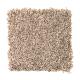 Fresh Start II in Champagne Sparkle - Carpet by Mohawk Flooring