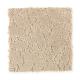 Garden Villa in Seascape - Carpet by Mohawk Flooring