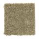 Forever Famous in Subtle Sage - Carpet by Mohawk Flooring