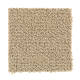 Taste Of Luxury in Country Maple - Carpet by Mohawk Flooring