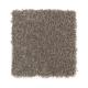 Iconic Idea Solid in Galaxy Shadow - Carpet by Mohawk Flooring