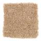 Rare Details in Honey Butter - Carpet by Mohawk Flooring