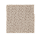 Main Interest in Outerbanks - Carpet by Mohawk Flooring