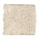 Exclusive Beauty in Down Feather - Carpet by Mohawk Flooring
