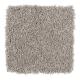 Stunning Appeal in Morning Fog - Carpet by Mohawk Flooring