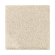 Organic Beauty I in Soft Linen - Carpet by Mohawk Flooring
