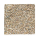 Memorabilia in Atlantic Shoreline - Carpet by Mohawk Flooring