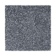 Memorable View in Brushed Metal - Carpet by Mohawk Flooring