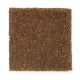 Brookfield Heights in Autumn Air - Carpet by Mohawk Flooring