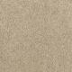 Enhanced Beauty in Ochre Tan - Carpet by Mohawk Flooring