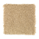 Exclusive Content II in Kindling - Carpet by Mohawk Flooring