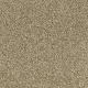 Churchill in Garden Club - Carpet by Mohawk Flooring
