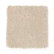 Elegant Appeal I in Desert Dust - Carpet by Mohawk Flooring