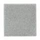 Absolute Elegance II in Breezeway - Carpet by Mohawk Flooring