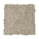 Emerging Image I in River Reed - Carpet by Mohawk Flooring