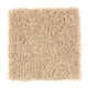 Crowd Favorite in Butterscotch - Carpet by Mohawk Flooring