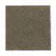Thompson Square in Herb Garden - Carpet by Mohawk Flooring