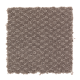 Feature Presentation in Toasted Taupe - Carpet by Mohawk Flooring