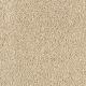 Extravagance in Bullion - Carpet by Mohawk Flooring