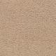 Laurel Ridge in 06 - Carpet by Mohawk Flooring