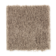 Famous Fair in Longhorn - Carpet by Mohawk Flooring