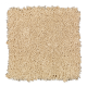 Comfortable Creation I in Natural Grain - Carpet by Mohawk Flooring