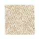 Rhythms in Praline - Carpet by Mohawk Flooring